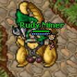 RudyMineR